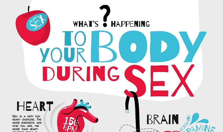 what sex does to your body