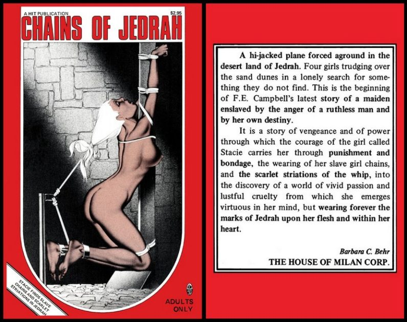 chains of jedrah stroke book by F.E. Campbell